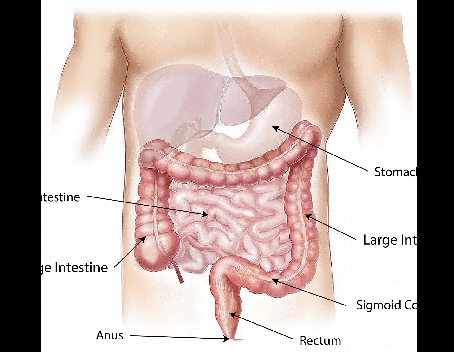 Spierknopen: wat zijn het en hoe kom je ervan af